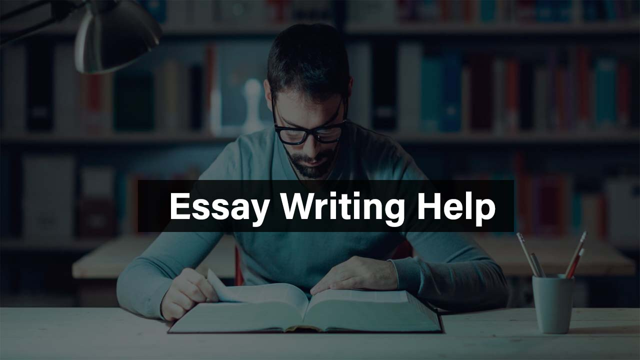 essay assignment service